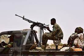 Niger army prevents boko haram's attack